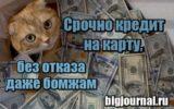 Картинка Срочно кредит на карту, без отказа даже бомжам