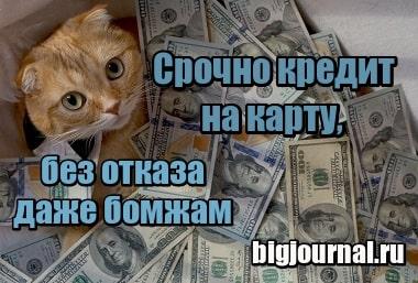 банк моментальных кредитов